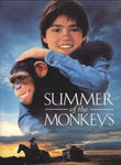 Summer of the Monkeys