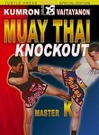Muay Thai Knockout