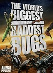 The World&#039;s Biggest and Baddest Bugs