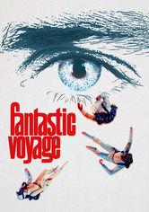 Rent Fantastic Voyage on DVD