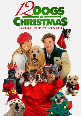 Rent 12 Dogs of Christmas: Great Puppy Rescue on DVD