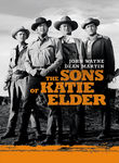 Sons of Katie Elder (1965) poster