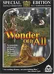 Wonder of it All poster