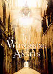 The Witnessing of Angels