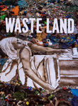 Waste Land box art